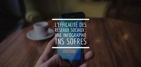 L'efficacité des réseaux sociaux : une infographie TNS Sofres | SocialWebBusiness | Scoop.it