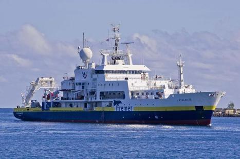 Bilan de l'exploration scientifique du plateau de Demerara au large de la Guyane | ifremer | Scoop.it