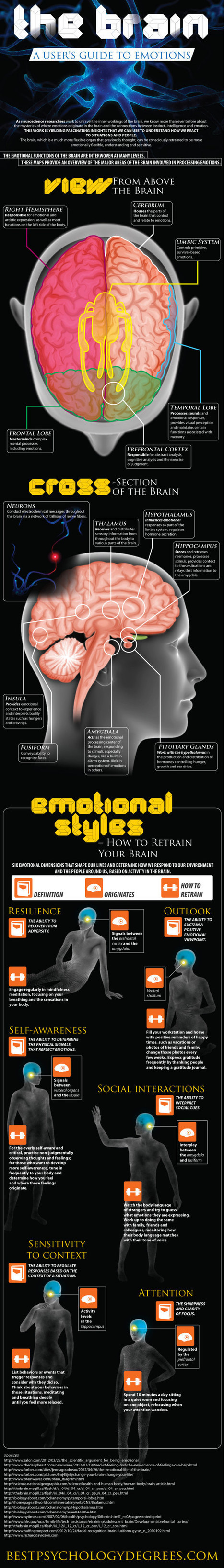 Anger Management 101 And The Brain Guide To Emotions [Infographic] | Psychology Daily | Scoop.it