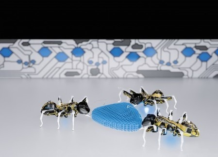 Festo unveils robotic ants, butterflies and chameleon tongue gripper | Cyborg Lives | Scoop.it