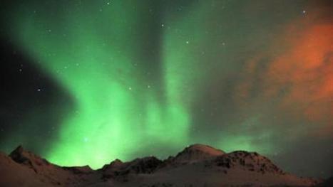 Video : des baleines dansent sous une aurore boréale, en Norvège @Solanden | 694028 | Scoop.it