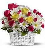 Flower Shop Niverville: Corolla Designs – Your Best Partner in Floral Decorations | Corolla Designs | Scoop.it
