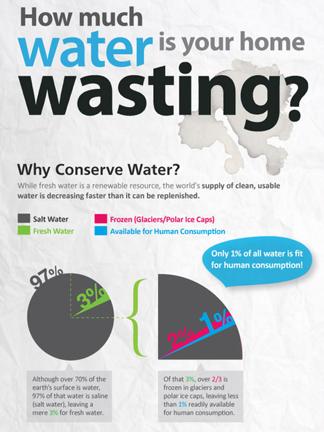 How Much Water is your Home Wasting?   green infographics   Scoop.it