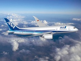 All Nippon Airways reprend ses vols depuis l'aéroport de Sendai | AirJournal.fr | Japon : séisme, tsunami & conséquences | Scoop.it