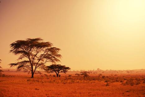 Pays émergents : en Afrique, un bilan contrasté   * INNOVATIONS DE SERVICES ET D'USAGES by Zilé   Scoop.it