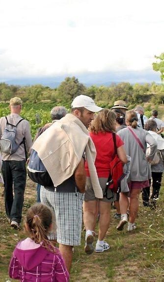 Balades vigneronnes en Minervois et Cabardès | Visit Haut Minervois | Scoop.it