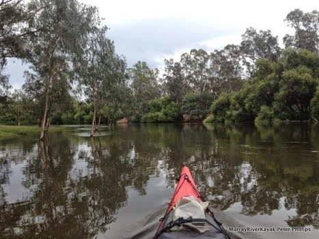 Murray River Kayak.: Goulburn River Paddle Day 3: Trawool - Nagambie. | VCE Geography | Scoop.it