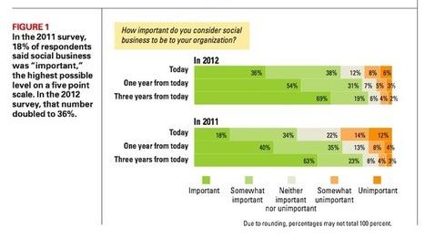 Il Social Business verso il consolidamento: da nicchia a mercato   e-nable social organization   Scoop.it