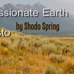 Compassionate Earth Manifesto by Shodo Spring | Sweeping Zen | Socially Engaged Buddhism | Scoop.it