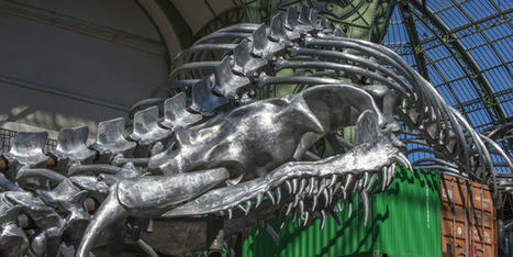 « Monumenta » : un gros serpent au Grand Palais | Art contemporain et culture | Scoop.it