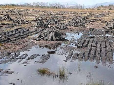The truth about Irish bog bodies (PHOTOS) - IrishCentral | Boyne Valley Heritage | Scoop.it