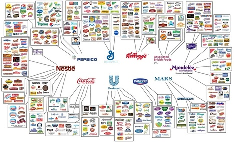 Fascinating graphics show who owns all the major brands in the world | INTRODUCTION TO THE SOCIAL SCIENCES DIGITAL TEXTBOOK(PSYCHOLOGY-ECONOMICS-SOCIOLOGY):MIKE BUSARELLO | Scoop.it