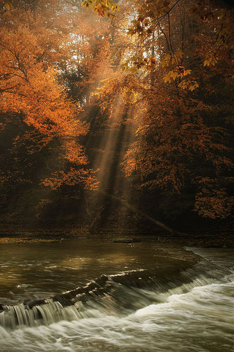 Photos of the Day: Autumn at the Waterfall | Inspired By Design | Scoop.it