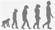 De nouvelles informations sur l'évolution des espèces | Aux origines | Scoop.it