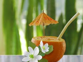 Recette de boisson fraîche aux oranges, glace à la vanille | boissons de rue, cocktail, smoothies santé, Boissons fraîches et chaudes du monde, | Scoop.it