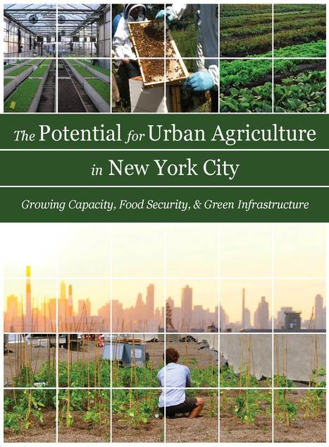 New report on the potential for urban agriculture | green streets | Scoop.it