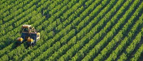 BQ Gaia: l'innovazione applicata all'agricoltura   Girando in rete...   Scoop.it