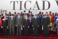 Ticad VI, tribune pour l'industrialisation de l'Afrique à partir de l'agriculture | Questions de développement ... | Scoop.it