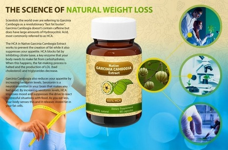 Native Garcinia Cambogia Extract – GET FREE TRIAL TODAY!!! | Lose Weight The Healthy Way | Scoop.it