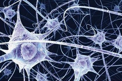 Créer des neurones à partir de cellules de la peau | Seniors | Scoop.it