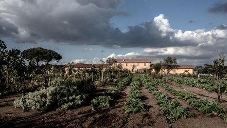 Fiorano Wine Estate in Italy Making a Comeback | Vitabella Wine Daily Gossip | Scoop.it
