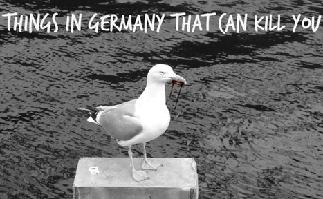 Things in Germany That Can Kill You | Angelika's German Magazine | Scoop.it