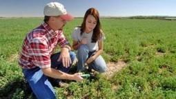 Agricoltore attivo   Dottore Commercialista   Scoop.it
