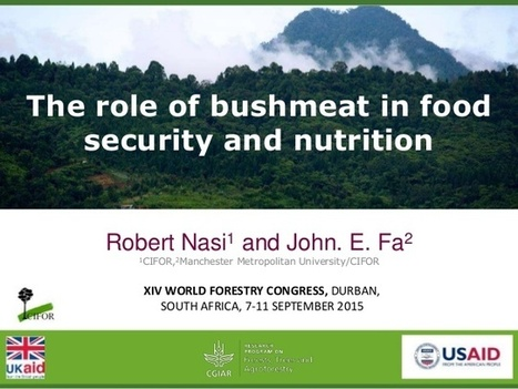 The role of bushmeat in food security and nutrition | Ecosystèmes Tropicaux | Scoop.it