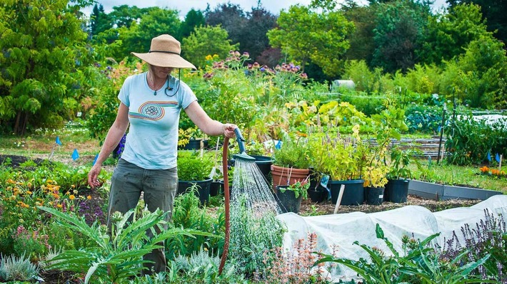 Become a Master Gardener online | Garden apps for mobile devices | Scoop.it