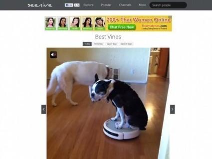 Seenive, regarder les meilleures vidéos de Vine | Veille outils stage | Scoop.it