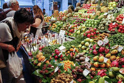 OECD – FAO expect stronger production, lower prices over coming decade | Food Security | Scoop.it