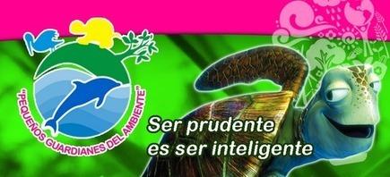 FUNDACION LOS PEQUEÑOS GUARDIANES DEL AMBIENTE: La Basura que Termina en el Mar Daña Gravemente a Miles de Especies Marinas | http-www-scoop-it-t-nuestras-costas-estan-enfermas | Scoop.it