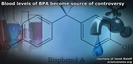 Blood levels of BPA become controversy | Save the Water | Water Education | Scoop.it