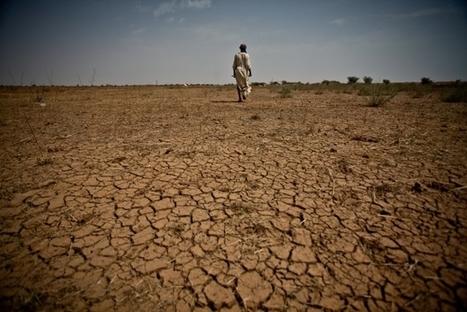 Le climat et la guerre   great buzzness   Scoop.it
