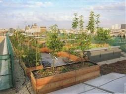 Habitat participatif: des nouvelles de plusieurs projets en France | Immobilier participatif | Scoop.it