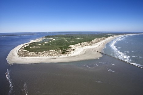 """On Cumberland Island, you don't have to choose between roughing it and pampering yourself 