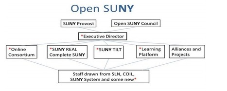 Open SUNY: A Game Changer in the Making -   Lifelong and Life-Wide Learning   Scoop.it