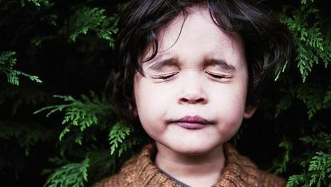 Omega Institute's Facebook Wall: Research shows positive results, across the board. What if you had learned mindfulness techniques as a kid? | Breathwork | Scoop.it