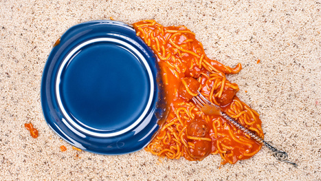 The Five Second Rule Will Make You Sick (And Maybe Dead) | Gizmodo (Blog) | CALS in the News | Scoop.it