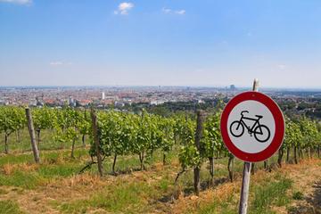 Œnotourisme : les animations estivales de juillet 2013 - Le blog d'iDealwine sur l'actualité du vin | Hôtellerie -restauration | Scoop.it