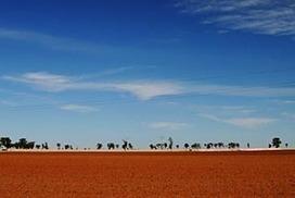Farm incomes face drought | Oceania Hoy! Diario Nacional | Scoop.it
