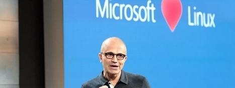 Microsoft abbraccia la Linux Foundation   Sassolini   Scoop.it