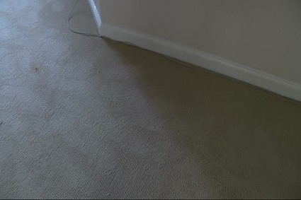 Evansville carpet cleaners stay busy in the wake of the floods - 14 News WFIE Evansville | Carpet Cleaning | Scoop.it