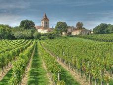 Vin: Bordeaux hausse le ton contre les pesticides - Journal de l'environnement | AMAP - Bio | Scoop.it