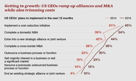 Top findings: Primed for profitable growth: CEOs streamline the business   Big Five, Industry & Consulting   Scoop.it