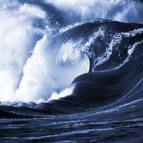 Are we missing half of the viruses in the ocean? | Biology & Biotech baubles | Scoop.it