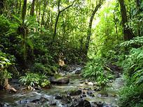 Turismo de Naturaleza | Naturaleza | Scoop.it