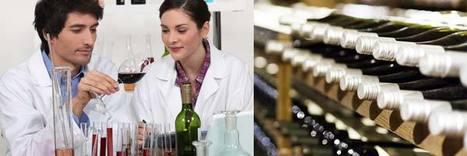 Las últimas investigaciones en la industria del vino | Sweet Press, S.L | Scoop.it