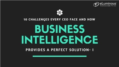 10 Challenges every CEO face and how Business Intelligence Services provides a perfect solution.(Part 1)   PHP development Company   Scoop.it