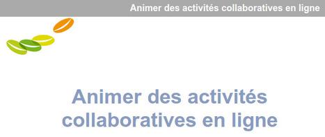 Animer des activités collaboratives en ligne | TICE, Web 2.0, logiciels libres | Scoop.it